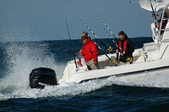 boston whaler fishing boats